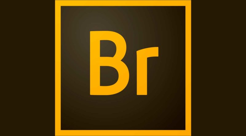 Adobe Bridge CC 2019 para Windows